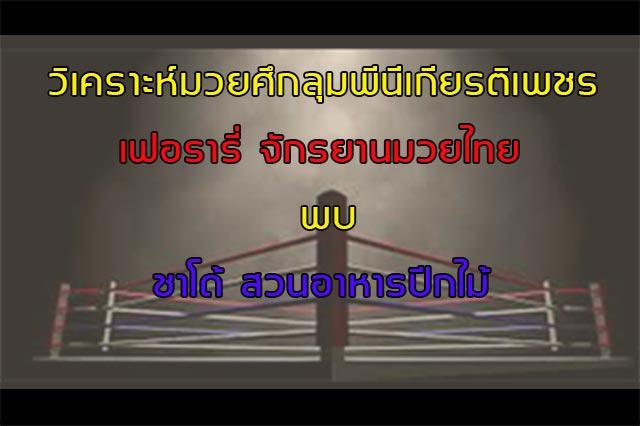 มวยไทย 10 05 2019