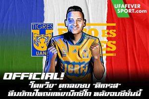 "OFFICIAL! ""โตแว็ง"" ตกลงซบ ""ติเกรส"" ทีมยักษ์ใหญ่แห่งเม็กซิโก หลังจบซีซั่นนี้ #ข่าวกีฬา #ข่าวฟุตบอลไทย #วิเคราะห์ฟุตบอล ufafeversport #ฟลอริย็อง โตแว็ง #โอลิมปิก มาร์กเซย #ตกลงซบทีม #ติเกรส #สโมสรยักษ์ใหญ่ในลีกเม็กซิโก #แบบฟรีเอเจนต์ #ด้วยสัญญาถึงปี 2026 #หลังจบฤดูกาลนี้"
